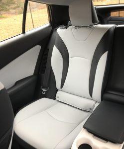 Backseat-of-the-Prius