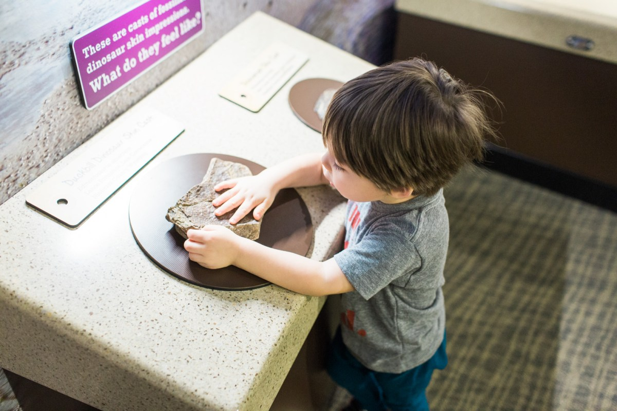 the-childrens-museum-of-indianapolis-dinosaurs-11