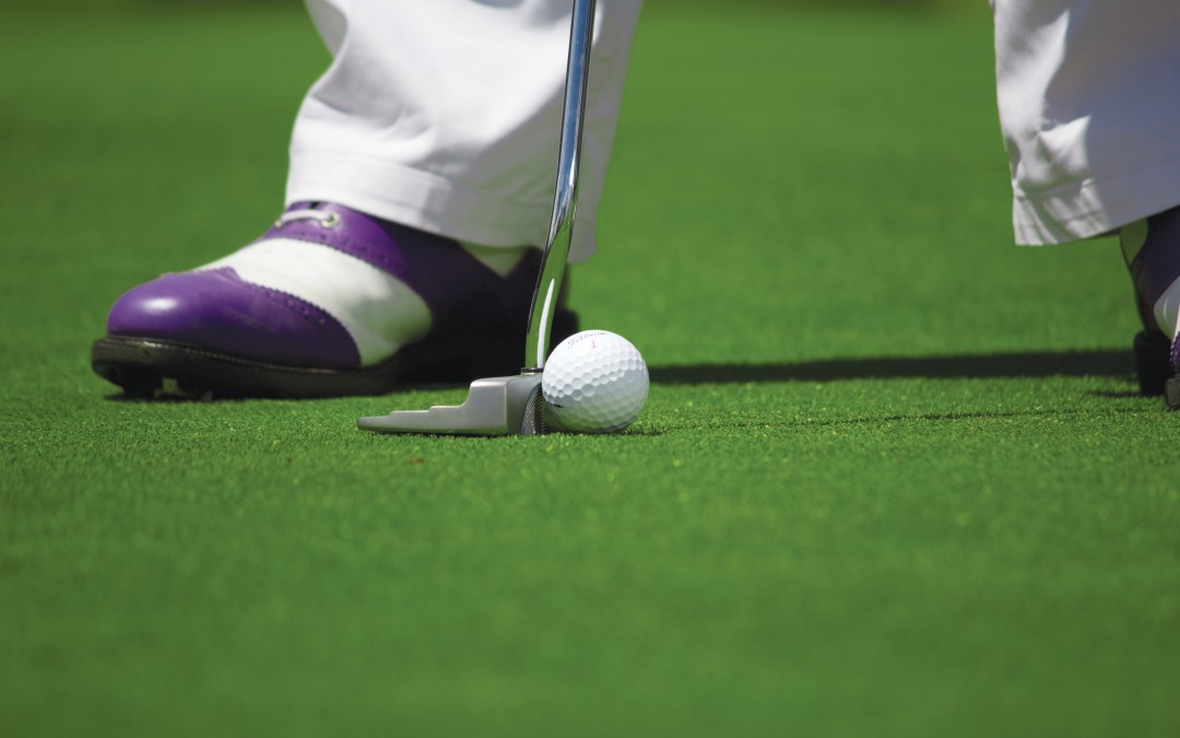 Boys golf team loses match to strong Anthony Wayne squad