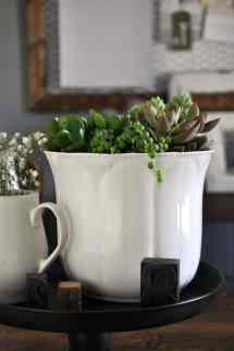 Ironstone Succulent Planter - Little Glass Jar