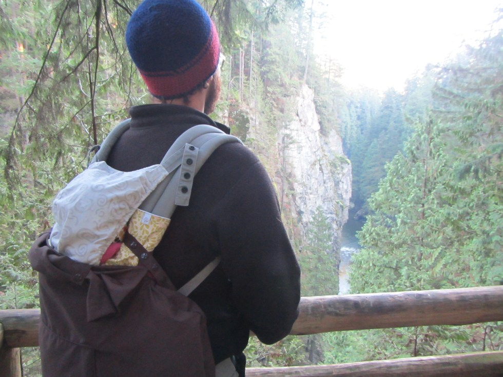 Capilano Pacific Trail lookout
