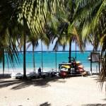 Destination soleil : crème solaire bio