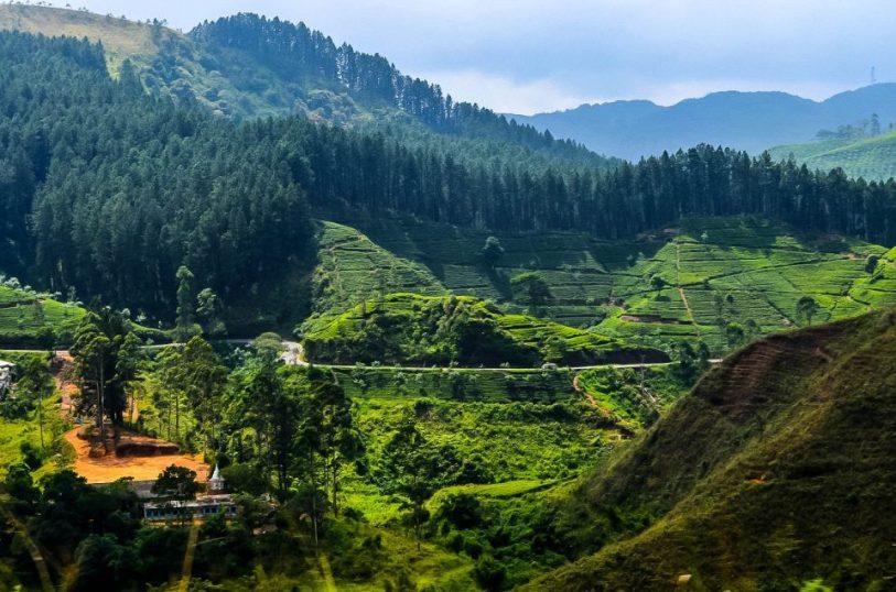 www.littlegreenbee.be voyage en train sri lanka