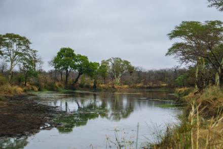 Mozambique-Limpopo-National-Park-Machampane-river