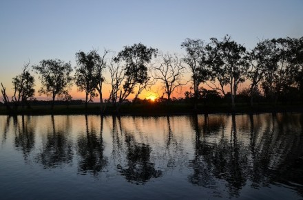 yellow-water-billabong-2417869_1280