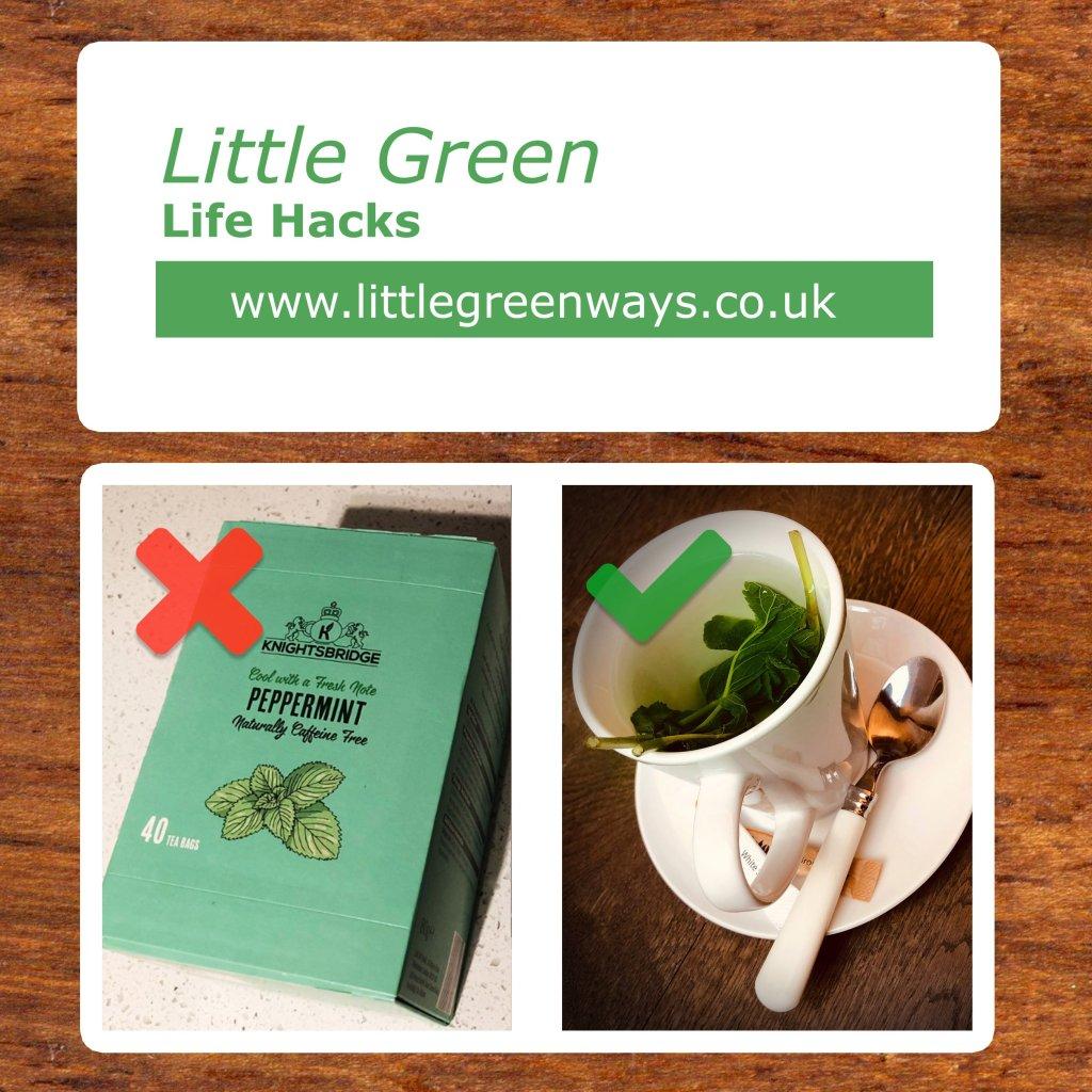 Little Green Life Hacks - Mint Tea