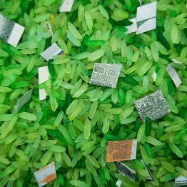 green rice money magic