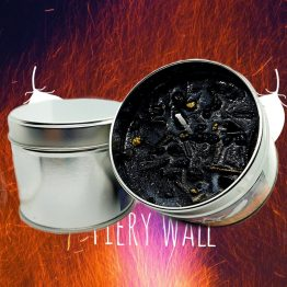 fiery wall of protection