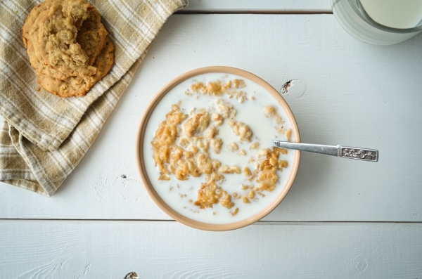 A flat lay view of a bowl of peanut butter cookie oatmeal. Served with plenty of milk and peanut butter cookies on the side.