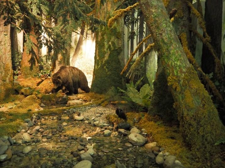Canada Victoria Vancouver Island Road Trip Royal BC Museum