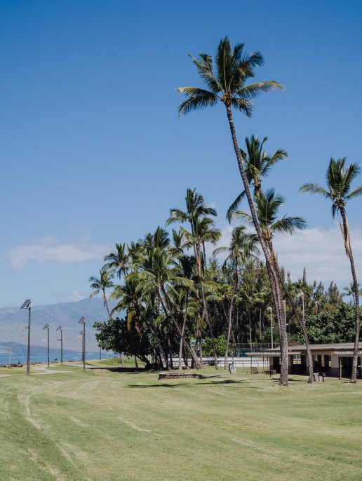 Maui Hawaii Kihei Travel