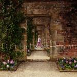 the_secret_garden.d9jcsheri8008c8sc4c0ogwk4.6ylu316ao144c8c4woosog48w.th