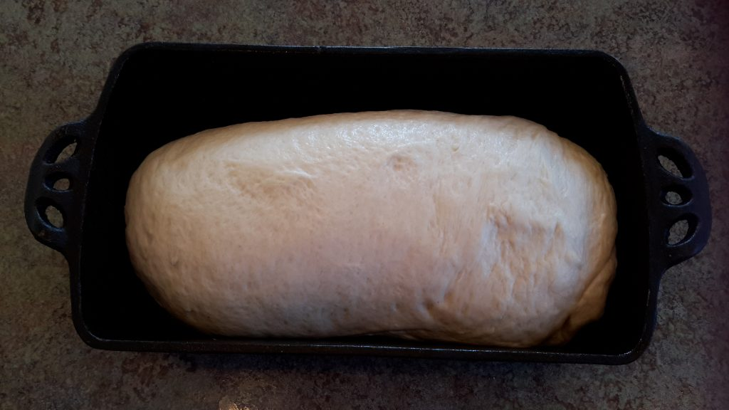 Dough is in a greased bread pan. I like to use my cast iron bread pans.
