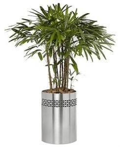 Round Ndebele Planter
