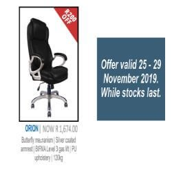 Orion Leather Chair Special