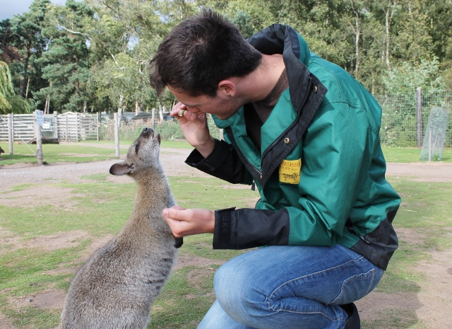 Jamie feeding a wallaby
