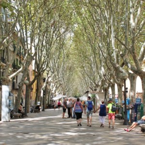 Postcards from Palma de Mallorca