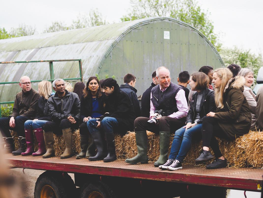 The Pointer farm in Brill