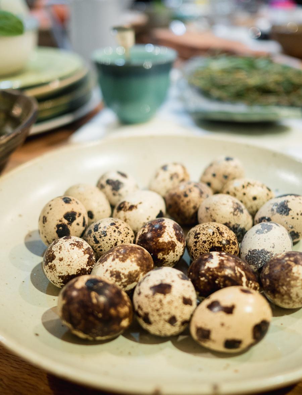heritage breed quails egg
