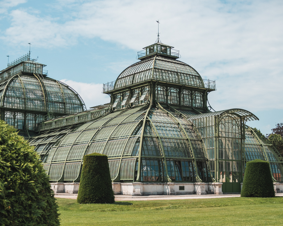 schonbrunn palace palm house