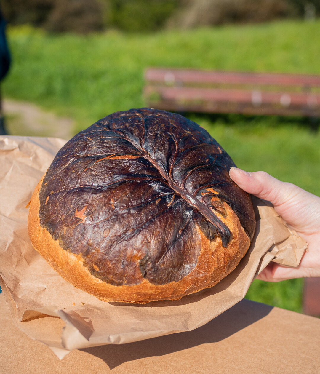 Jersey cabbage bread