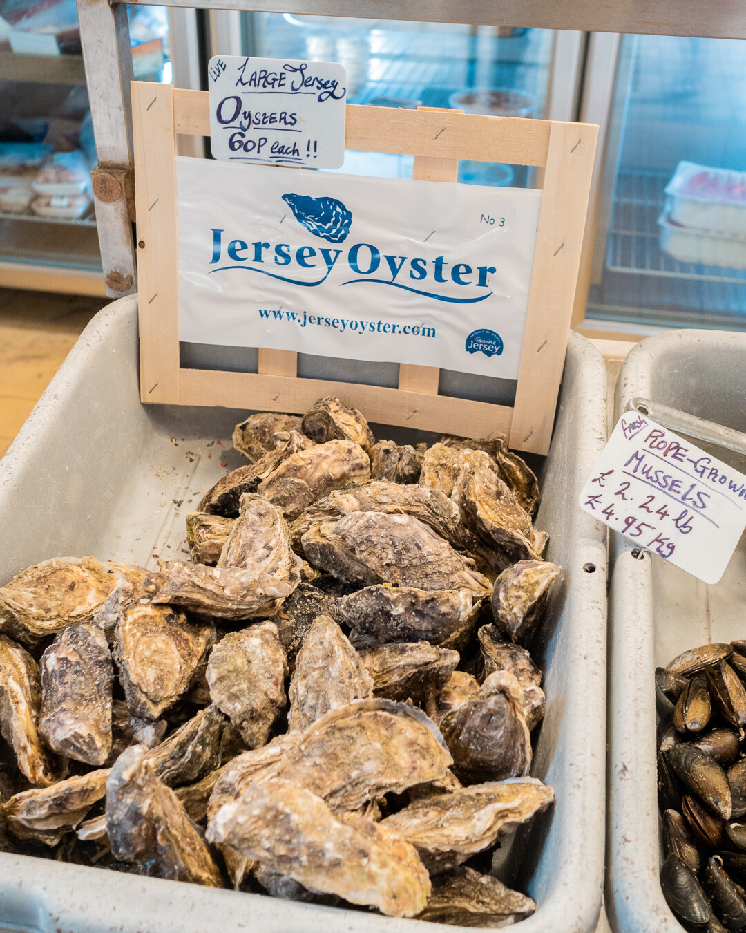 jersey oyster