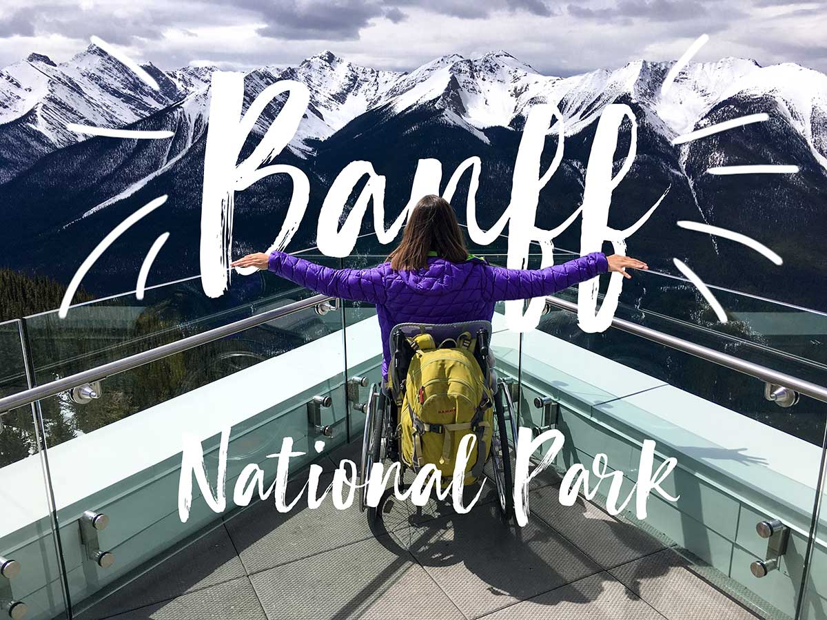 Little Miss Turtle | Banff NP in a wheelchair