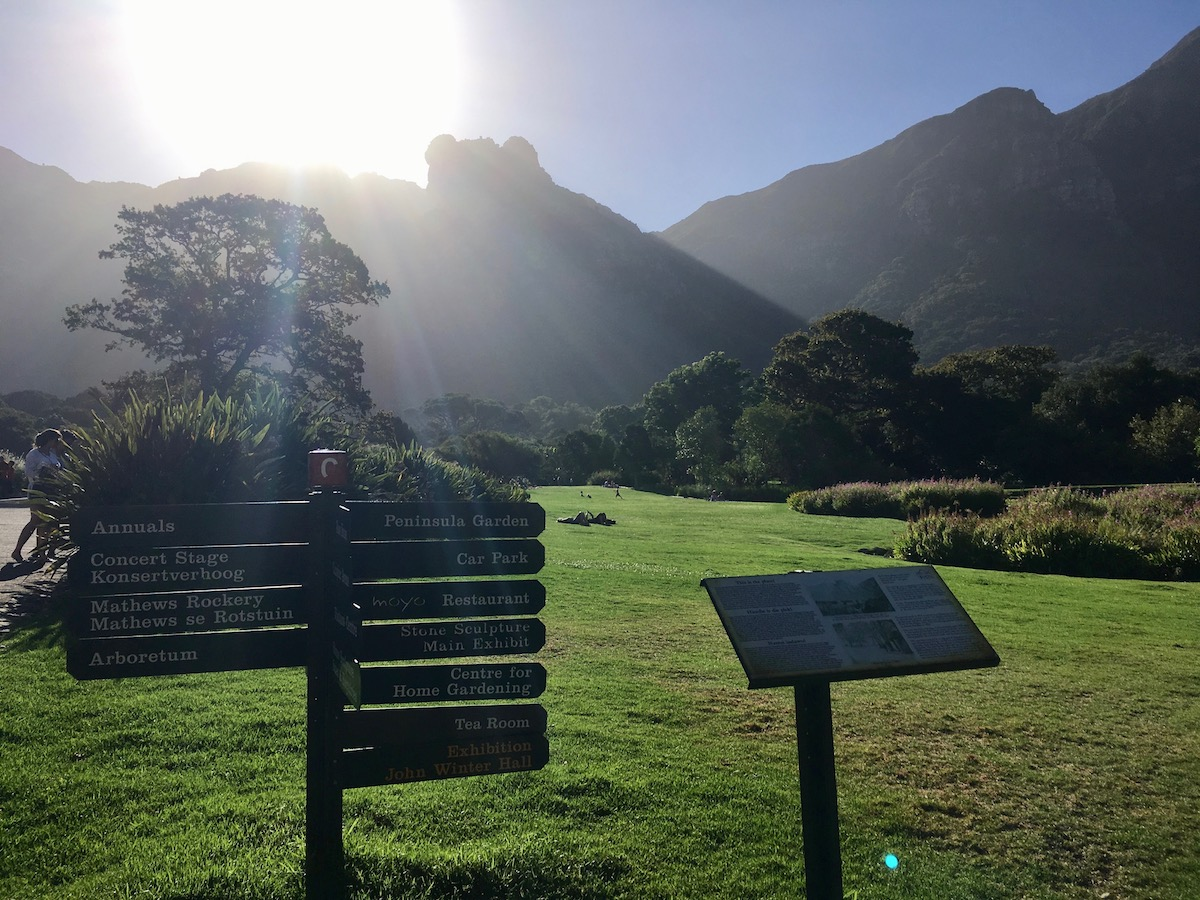 Beautiful Kirstenbosch National Botanical Garden
