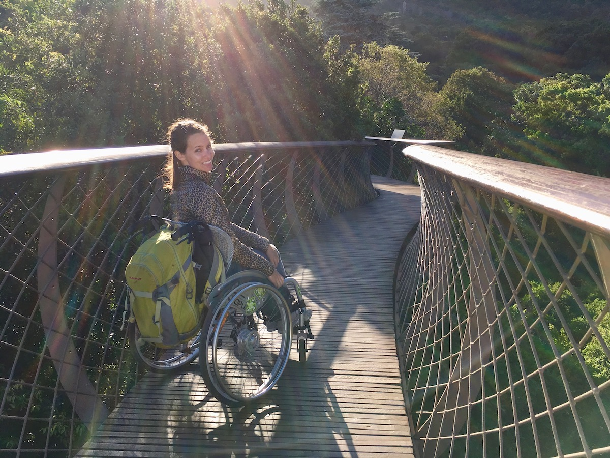 Wheelchair-accessible Canopy Tree Walkway at Kirstenbosch National Botanical Garden