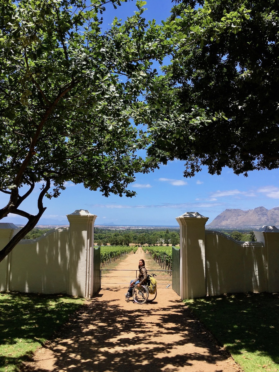 Wheelchair-friendly Groot Constantia Wine Estate