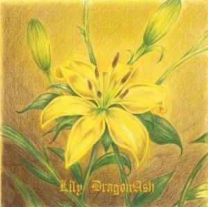DragonAsh_Lily
