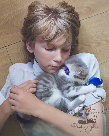 Boy with grey kitten