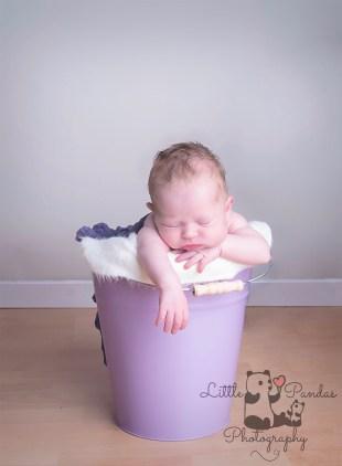 Baby girl in bucket purple