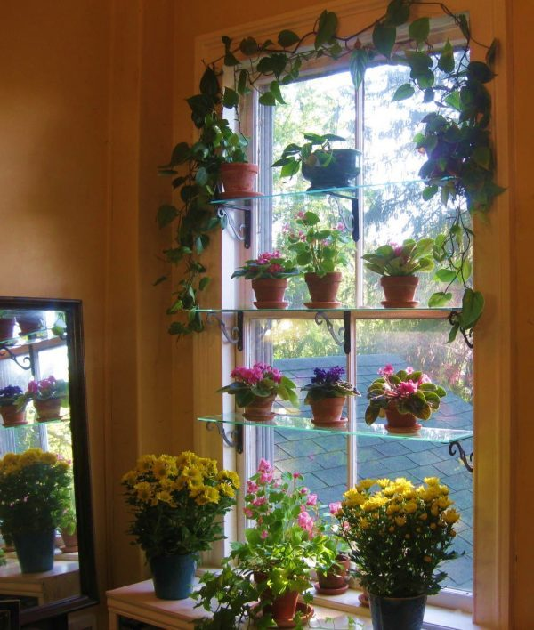 15 Beautiful window gardens  Little Piece Of Me
