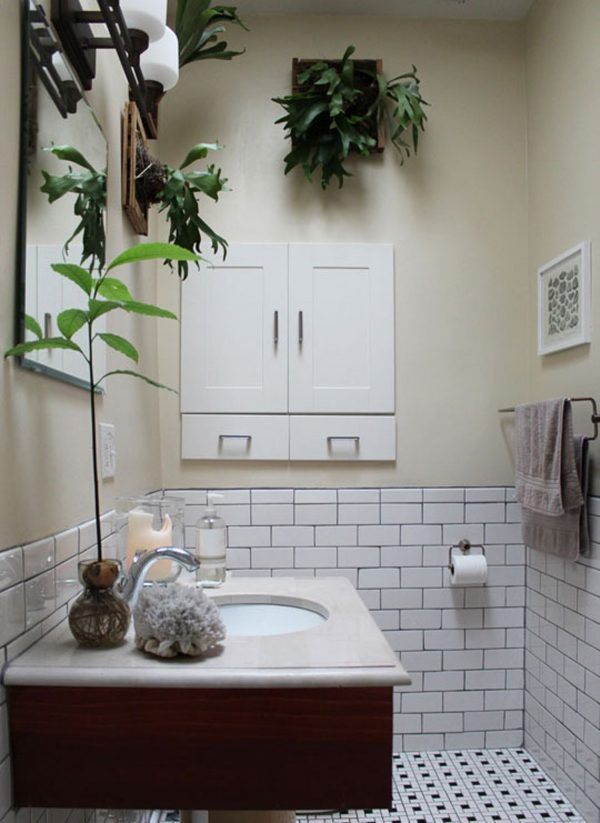 Plants in the bathroom the cheapest way to decorate