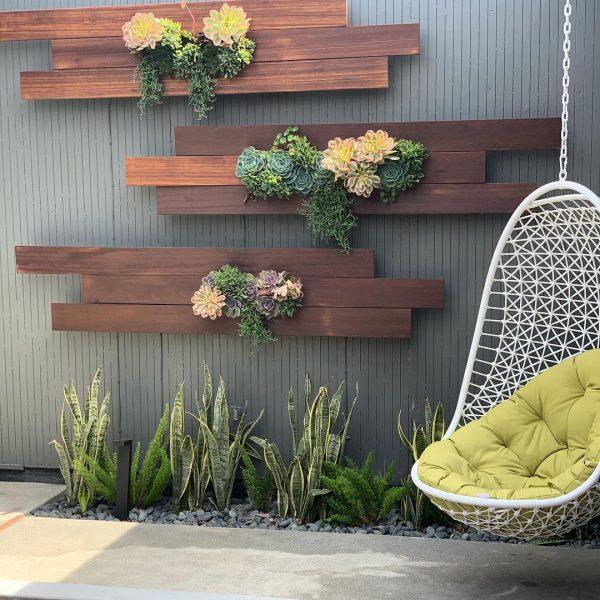 Succulent wall garden ideas