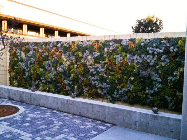 succulent wall design