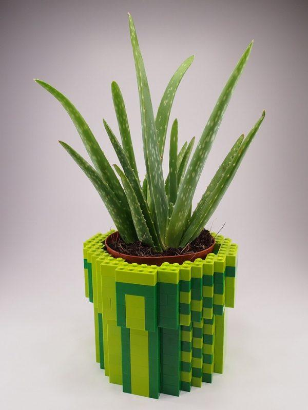 lego projects for adults