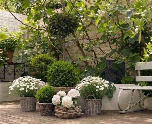 wicker planters outdoor