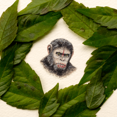 Planet of the Apes – 23 x 25 mm.