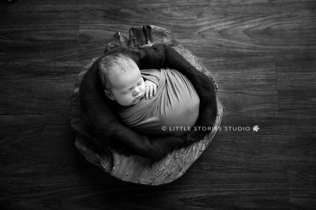 baby boy newborn photos brisbane black and white