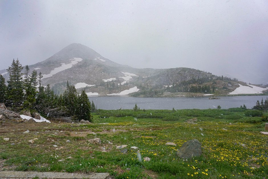 Medicine Bow National Forest - Things to do in Wyoming