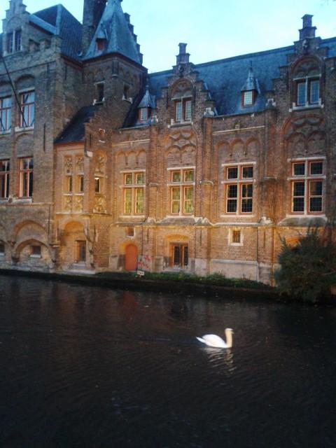 Brügge: bezauberndes Städtchen unweit von Brüssel