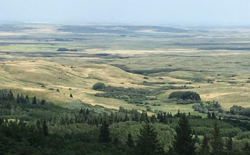 Cypress Hills Interprovincial Park