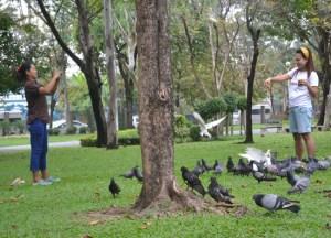 Feeding Pigeons, Chatuchak Park Bangkok, Park Life in Southeast Asia