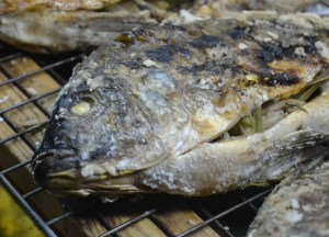 Pla Pao Grilled Fish, Top 10 Isan Food, Northeastern Thailand