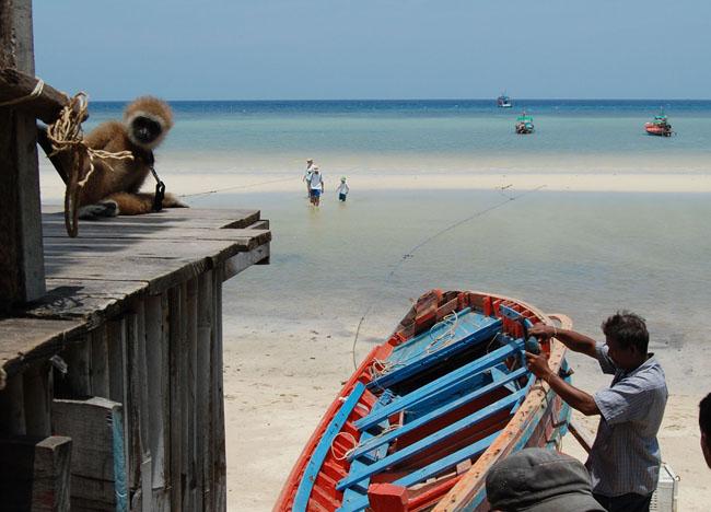 Chalok Baan Kao Beach, Koh Tao Hideaways, Thailand, Southeast Asia
