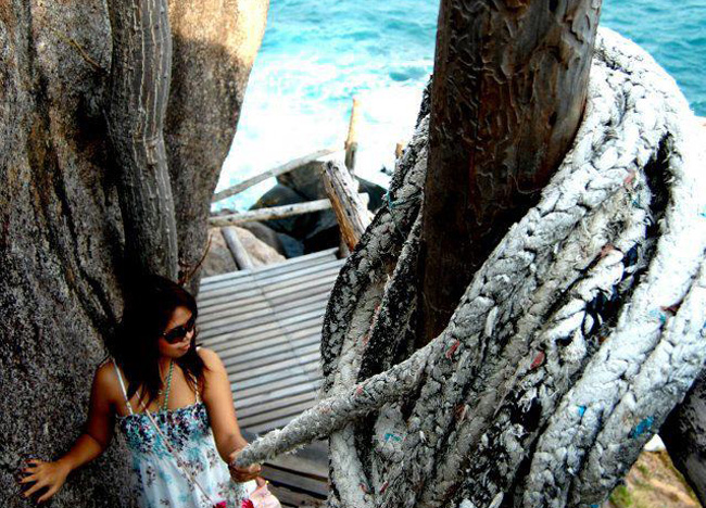 Cliff Climb to Sea Moon Dance Magic View, Koh Tao Hideaways, Thailand