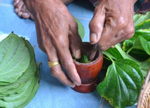Mixing Betel, What is Betel Nut Chewing in Thailand, Southeast Asia