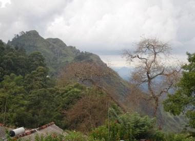 Tea Garden Hotel Ella, South Sri Lanka Tour, Independent Travel Asia